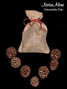 Mammutbaum Tannenzapfen